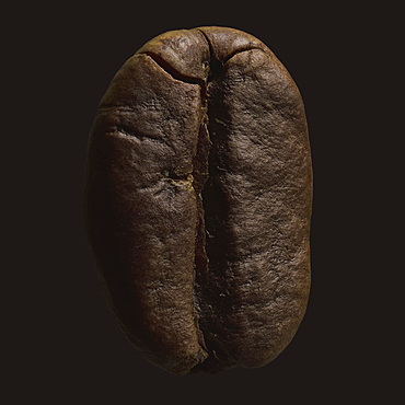 Close up brown coffee bean on black background