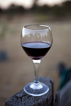 Glass of red wine perched on wood in heathcote, victoria, australia