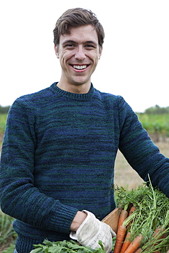 Man holding harvested carrots in field, portrait