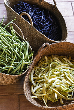 Fresh harvested variety of yellow, green and purple beans in straw baskets