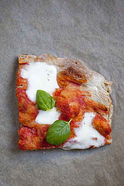 High angle view of pizza with mozzarella cheese and basil