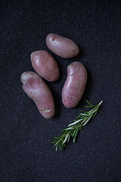 Close-up of purple potatoes and rosemary