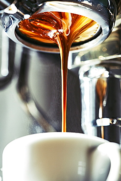 Close up espresso dripping into coffee cup