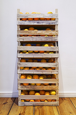 Crates of fresh harvested oranges stacked against wall