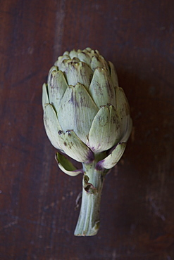 Directly above shot of artichoke on table