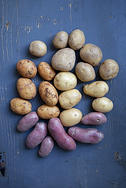 Various potatoes on wooden table