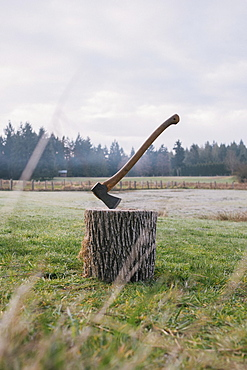 Axe wedged into tree stump at field