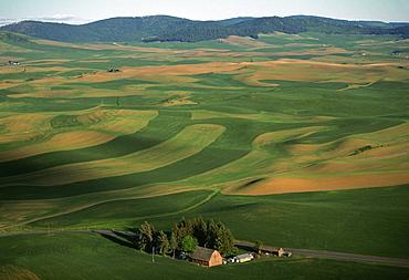 Aerial, farm country