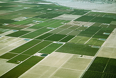 Desert agriculture, Imperial Valley, California