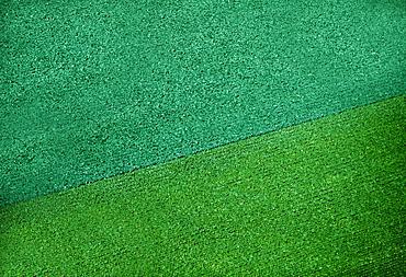 Aerial of broccoli and cauliflower field