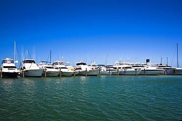 Boats docked at a harbor, Garrison Bight Marina, Key West, Florida, USA