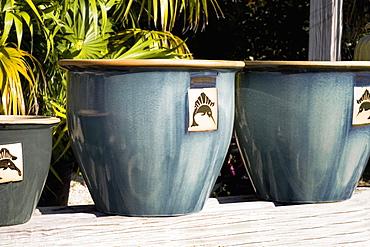 Close-up of three vases, Florida Keys, Florida, USA