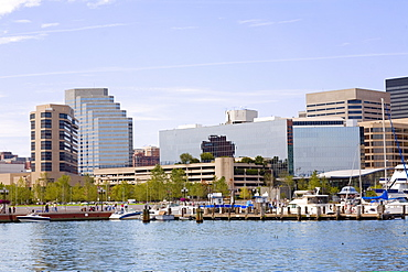 Buildings at the waterfront, Inner Harbor, Baltimore, Maryland, USA