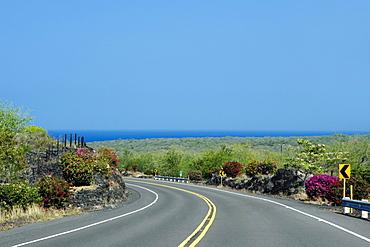 Road passing through a landscape, Honaunau, Kona Coast, Big Island, Hawaii Islands, USA