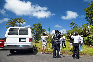 Rear view of tourists taking pictures in a forest, Akaka Falls State Park, Hilo, Big Island, Hawaii Islands, USA