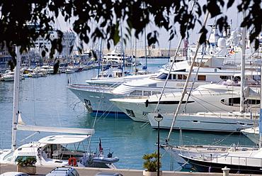 Passenger ships and tourboats at a harbor, Nice, France