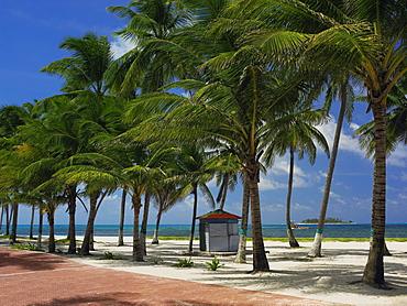 Beach hut at the seaside, Spratt Bight Beach, San Andres, Providencia y Santa Catalina, San Andres y Providencia Department, Colombia