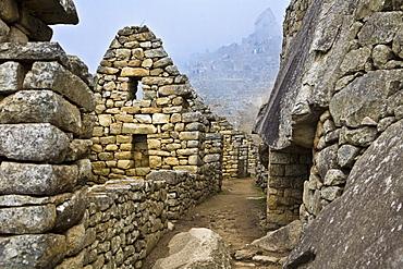 Street passing through the old ruins, Machu Picchu, Cusco Region, Peru