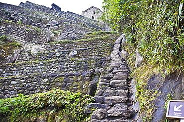 Low angle view of ruined steps, Aguas Calientes, Mt Huayna Picchu, Machu Picchu, Cusco Region, Peru