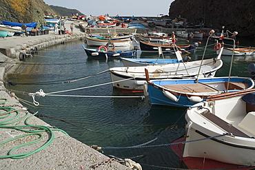 Boats moored at a harbor, Italian Riviera, Cinque Terre National Park, Mar Ligure, RioMaggiore, Cinque Terre, Vernazza, La Spezia, Liguria, Italy