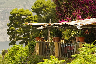 Restaurant surrounded with trees, Sorrento, Naples Province, Campania, Italy