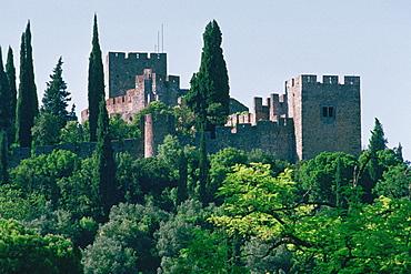 Castle behind trees, Crusader Castle, Tomar, Portugal