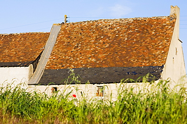 Farmhouses in a field, Loire Valley, France