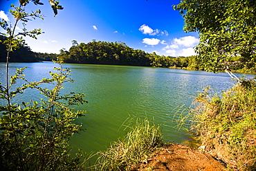 Trees at the lakeside, Lagunas De Montebello National Park, Chiapas, Mexico