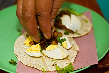 Close-up of a person's fingers preparing Mexican taco, Cuetzalan, Puebla State, Mexico