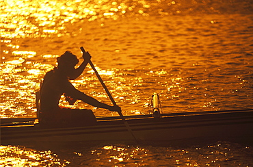 Silhouette of a person rowing a boat at dusk, Hawaii, USA