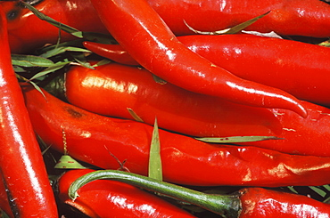 Close-up of red chilli peppers, Bali, Indonesia