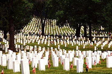 Tombstones in a cemetery, Arlington National Cemetery, Arlington, Virginia, USA