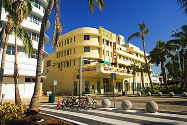 Palm trees in front of a building, Miami, Florida, USA