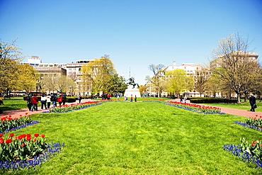 Low angle view of Andrew Jackson Statue, Lafayette Park, Washington DC, USA
