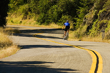 Rear view of a person cycling
