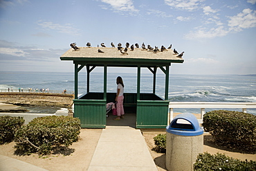 Side profile of a woman standing in a gazebo at the waterfront, La Jolla, San Diego, California, USA