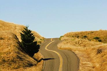 Road passing through a landscape