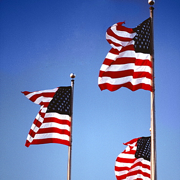 Low angle view of American flags fluttering, Washington DC, USA