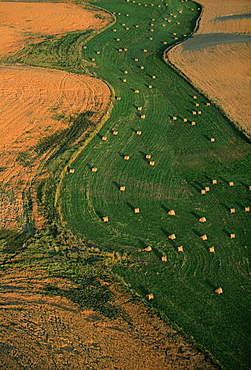 Aerial view of hay fields, Washington state