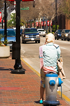 Rear view of a person sitting on a fire hydrant, Orlando, Florida, USA