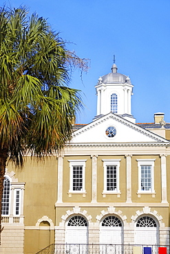 Tree in front of a building, Old Exchange Building, Charleston, South Carolina, USA