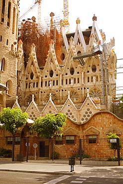 Low angle view of a church, Sagrada Familia, Barcelona, Spain