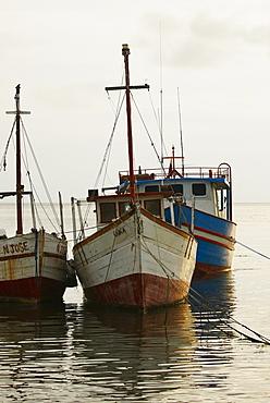 Tourboats anchored at the port, Taganga Port, Taganga Bay, Magdalena, Colombia