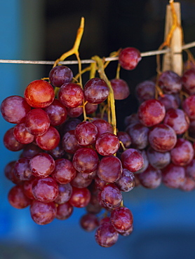 Close-up of red grapes hanging at a market stall, Providencia, Providencia y Santa Catalina, San Andres y Providencia Department, Colombia