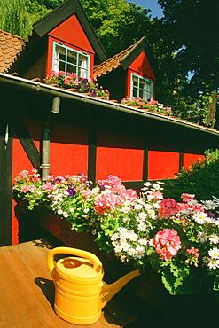 Flowers in front of a restaurant, Tivoli Gardens, Copenhagen, Denmark