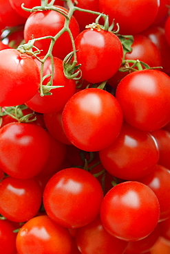 Close-up of tomatoes at a market stall, Sorrento, Sorrentine Peninsula, Naples Province, Campania, Italy