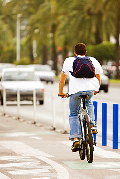 Rear view of a man riding a bicycle, Promenade des Anglais, Nice, Provence-Alpes-Cote D'Azur, France