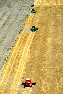 Aerial view of whet harvest in Burlington with combines