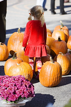 Rear view of a girl standing with a heap of pumpkins