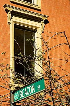 Low angle view of street sign, Boston, Massachusetts, USA